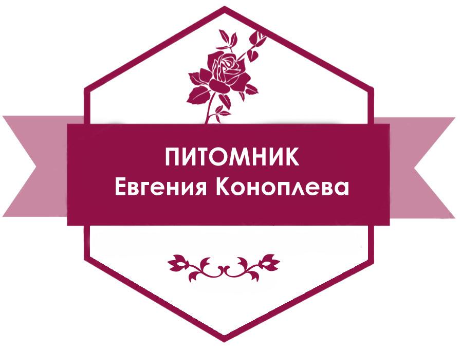 Питомник Евгения Коноплева