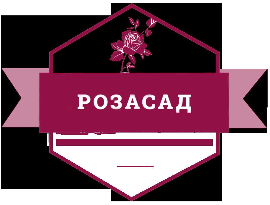 Питомник Евгения Коноплева (РОЗАСАД)